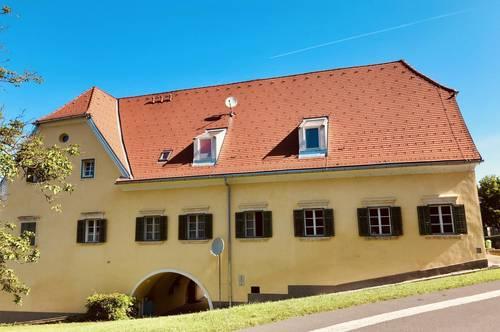 Super lässige 2-Zimmer-Wohnung mit zusätzlicher Galerie in Wolfsberg im Schwarzautal zu vermieten