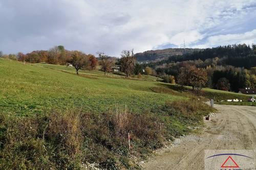 Wunderschöne Baugründe am Fuße des Sonntagberges!