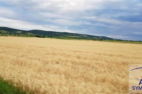 Ackerfläche mit ca. 14 ha zu verkaufen!