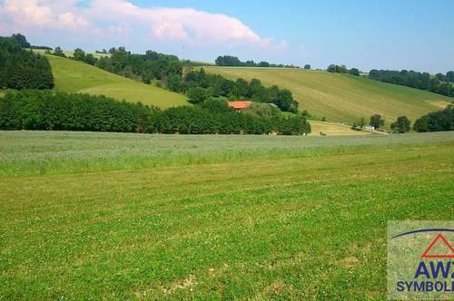 Acker + Grünland + Wald