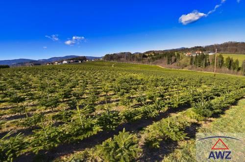 Über 15 ha landwirtschaftliche Nutzfläche, auch für Investoren sehr Interessant.