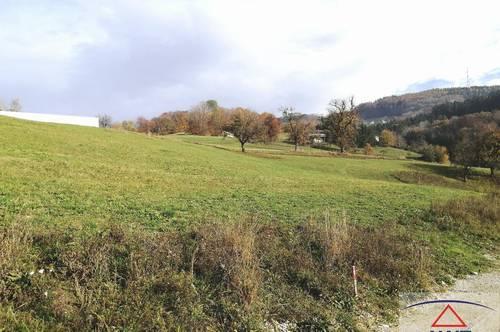 Wunderschöner Baugrund am Sonntagberg!