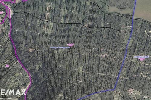 Waldparzellen in Görtschach