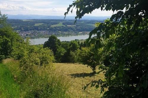 Wunderschöner Grünlandgrund/Forst in herrlicher Aussichtslage zu verkaufen!