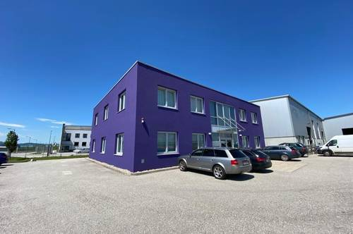 Büro 300 m² in bester Lage - West 2