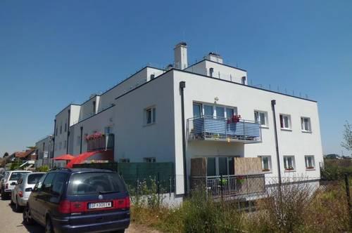 4 Zi Mietwohnung 99 m² + Terrasse von 50 m²  + Garagenstellplatz KFZ