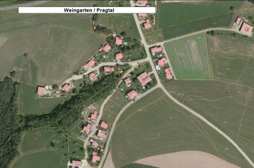 Bauprojekt Weingarten kleine Einzelhausanlage