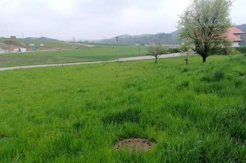 Ideales Grundstück ohne Bauzwang!