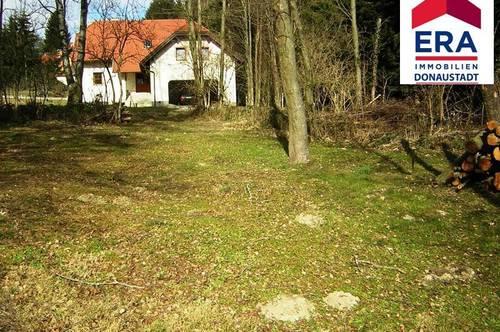 Großes Grundstück in Krumbach