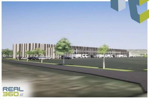 Logistikhalle bestehend aus Halle und Büroflächen in Wels-Nord zu vermieten!