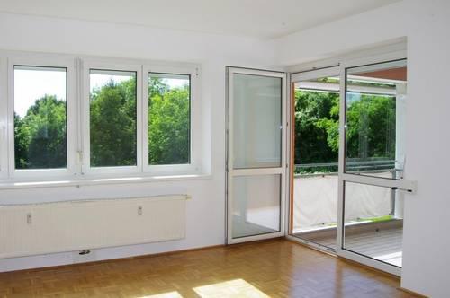 3 Zimmer Wohnung mit Loggia im Grünen (Katzbach)
