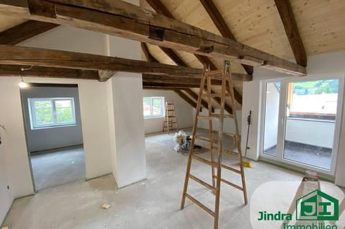 Neu ausgebaute- 2- Zimmer-Dachterrassen-Wohnung zu vermieten!