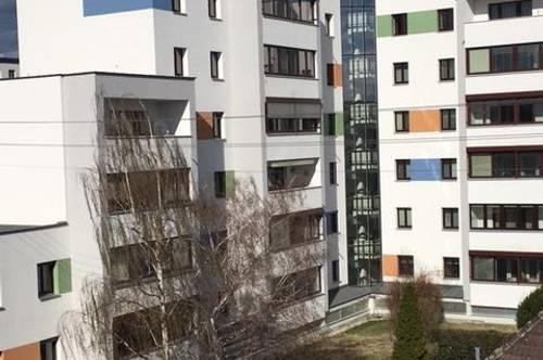 Hafenstraße 23