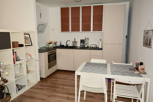 Lovely fully furnished apartment next to city center