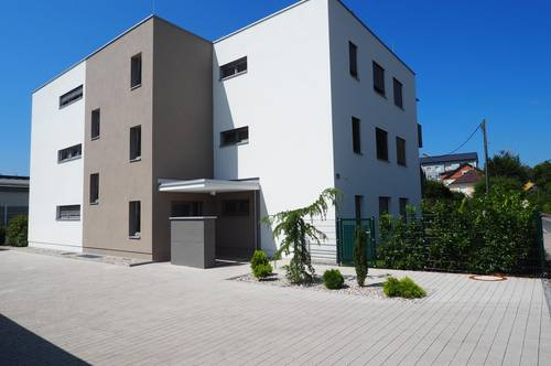 Kleines Gartenglück am Spitalberg.