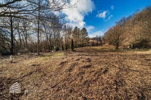 Gartengrundstück in Mauer - Nähe Lainzer Tiergarten - Ein Traum für Hobbygärtner
