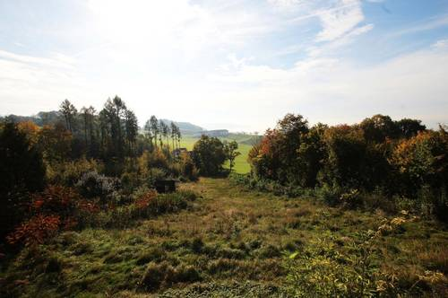 Hanggrundstück in Altenberg