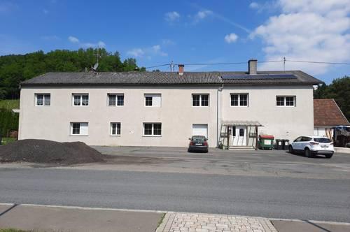 Mietshaus in sonniger, ruhiger Lage mit 1 Ha Grund und viel Potential. Nähe Jennersdorf