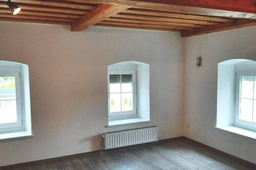 K3! Schöne neu renovierte Mietwohnung mit großer Terrasse und Gartenbenutzung, in guter Stadtrandlage.