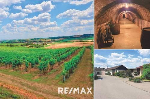 Wein- und Ackerbau | Laufender Betrieb zu kaufen!