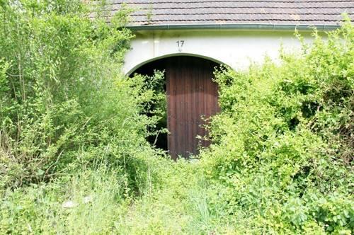 Grundstück für Erholung mitten im Südburgenland