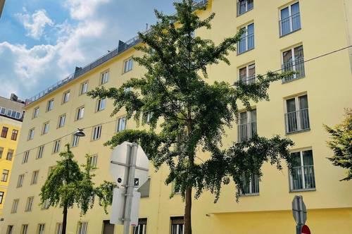 Generalsaniertes Schmuckstück im sanierten Haus – freier Mietzins!