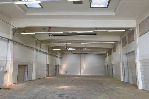 Belichtete 380 m² Lager- und Produktionshalle in Wr. Neustadt