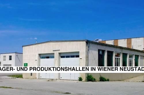 630 m² Lager- und Produktionshalle Wr. Neustadt