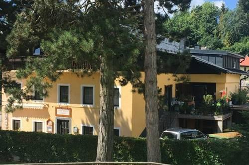 neu renovierte 2 Zimmerwohnung in Oberndorf