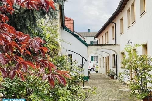 Burgenlandhaus im Zentrum von Breitenbrunn