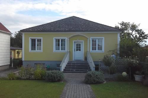 Einfamilienhaus mit grossem Grundstück