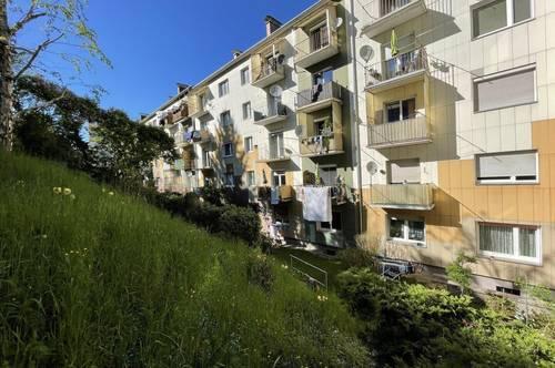 Sonnige Singlewohnung mit gemeinschaftlichen Garten.