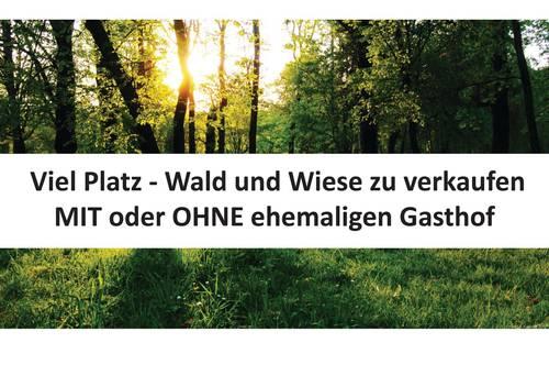 Viel Platz - Wald und Wiese zu verkaufen MIT oder OHNE ehemaligen Gasthof