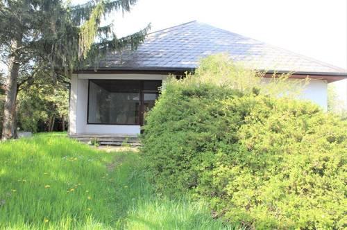 WOHNEN & ARBEITEN - Haus mit Souterrainwohnung