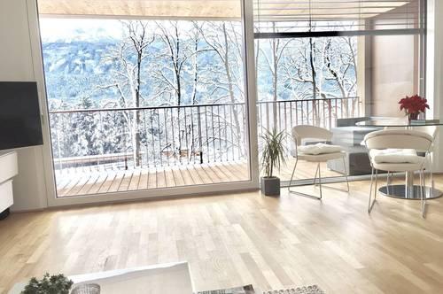 Traumhafte 2-Zimmer-Wohnung mit Panoramablick
