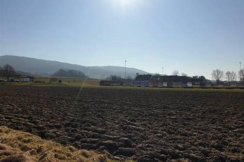 Ertragreiche Ackerfläche im sonnigen Bad Gleichenberg zu verkaufen