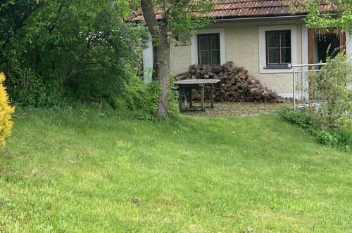 Ruhige Wohnung im Grünland
