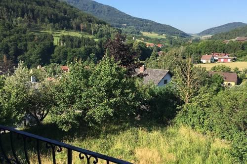 Großzügiges Einfamilienhaus in der Wachau