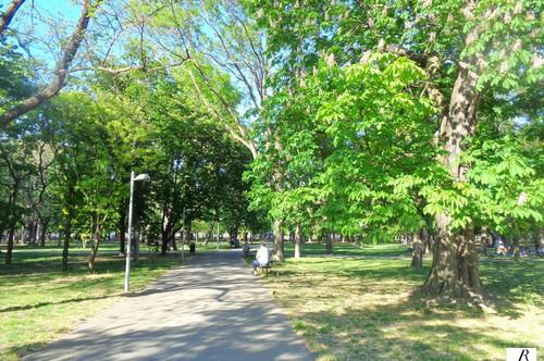 Nähe Prater Park/ Neubauwohnung/ kleine Terrasse!