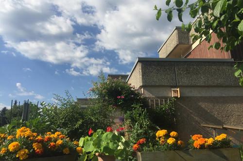 Wohnung Nähe Leopoldskroner Weiher, Salzburg
