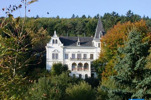 """Einzigartige Gelegenheit! """"Hartig-Villa"""" Bad Sauerbrunn zu verkaufen!"""