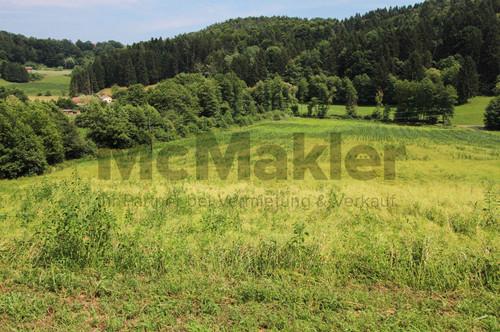 Familienparadies im Grünen: Sonniges Baugrundstück in Edelsgrub bei Graz