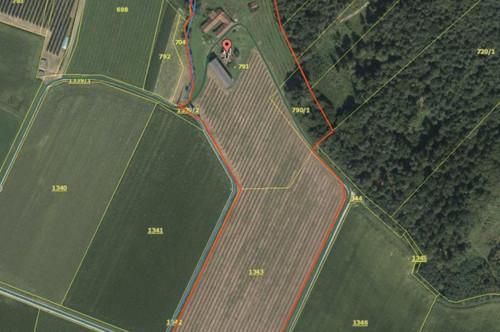 Riesiges naturidyllisches Grundstück mit viel Entwicklungspotential.