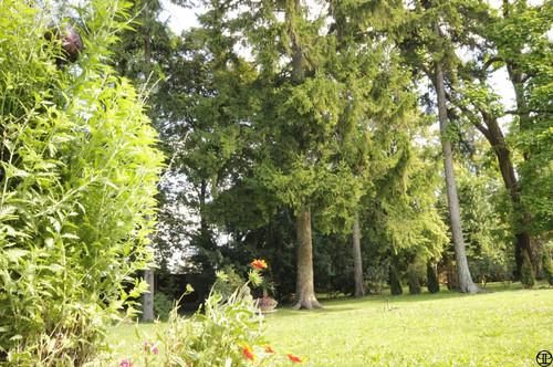 Parkähnliches ca. 3230 m² Grundstück für Bauträger