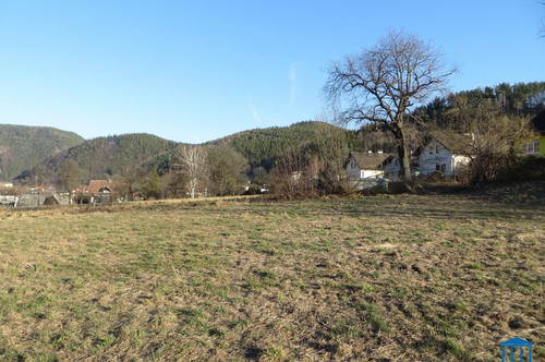 Baugründe in Gloggnitz/Pettenbach