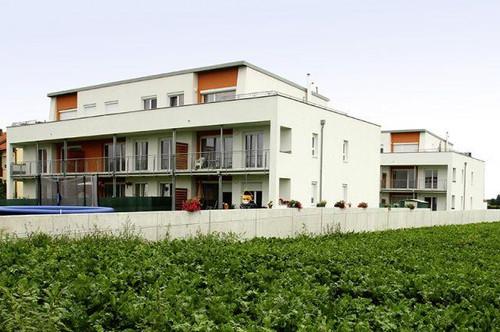Palterndorf. geförderte 3 Zimmer Wohnung   Balkon   Miete mit Kaufrecht.