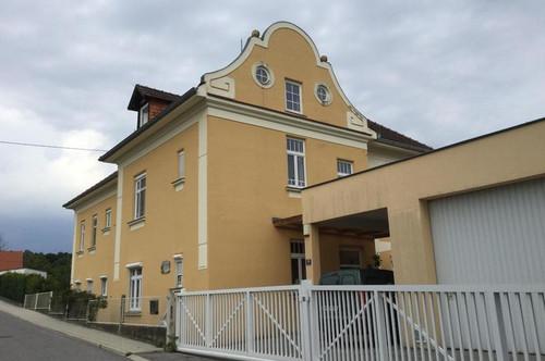 Familienwohnsitz - Villa mit 2 Wohneinheiten bei Lockenhaus zu verkaufen
