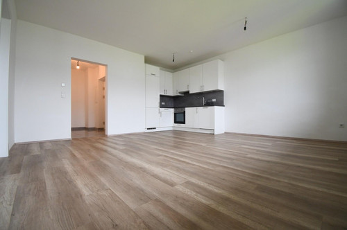 Neubauprojekt in Hankenfeld inkl. EWE Küche & eigenen Stellplatz --- FERTIGSTELLUNG Okt. 2020