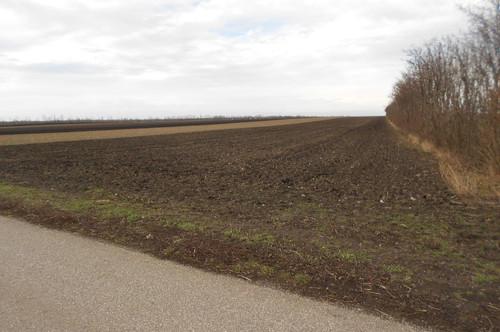 2,5 ha Ackerfläche - für Freizeitprojekt - im Bezirk Mistelbach. Laa/Thaya-Nähe.
