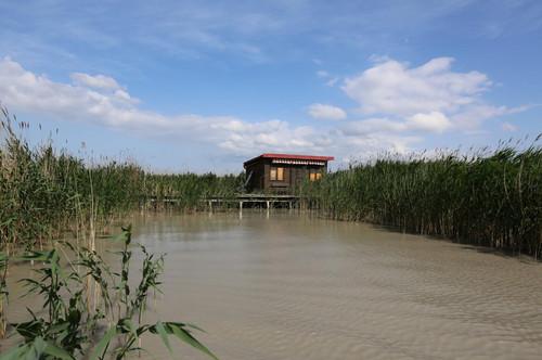 Kleine sanierungsbedürftige Flachdach-Seehütte in traumhafter Lage am offenen See